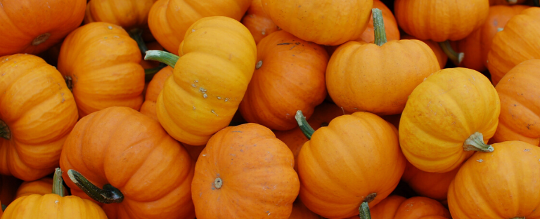 Give em' pumpkin to talk about…